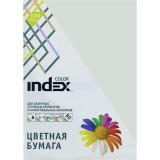 Бумага INDEX COLOR A4 100л/пач 80 гр, светло-серый (IC93/100) (00-00019695)